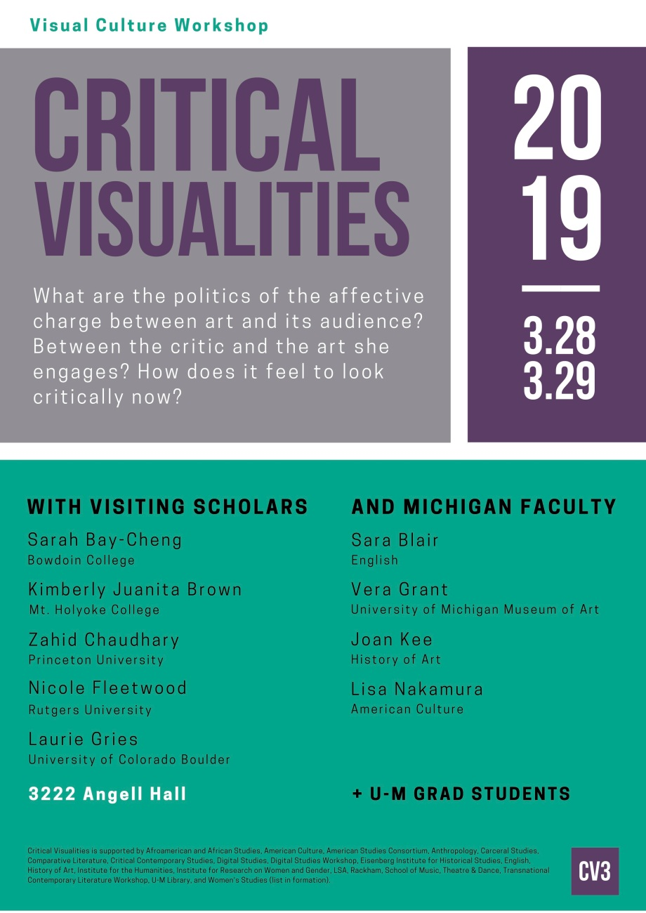 Critical Visualities 2019